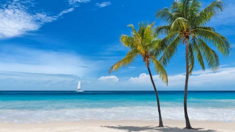Southwest Florida Beaches
